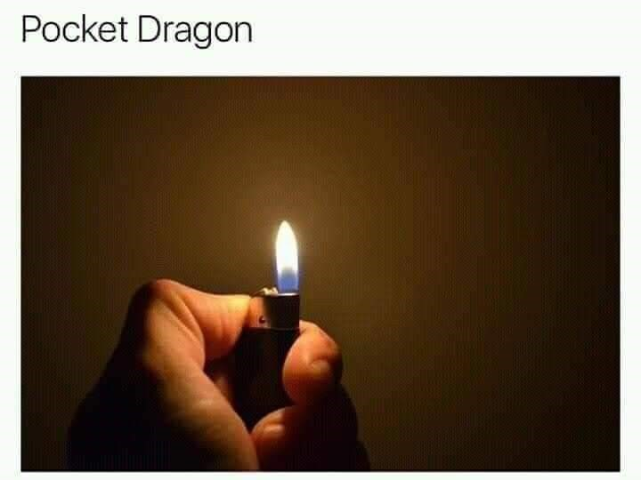 Lighting - Pocket Dragon