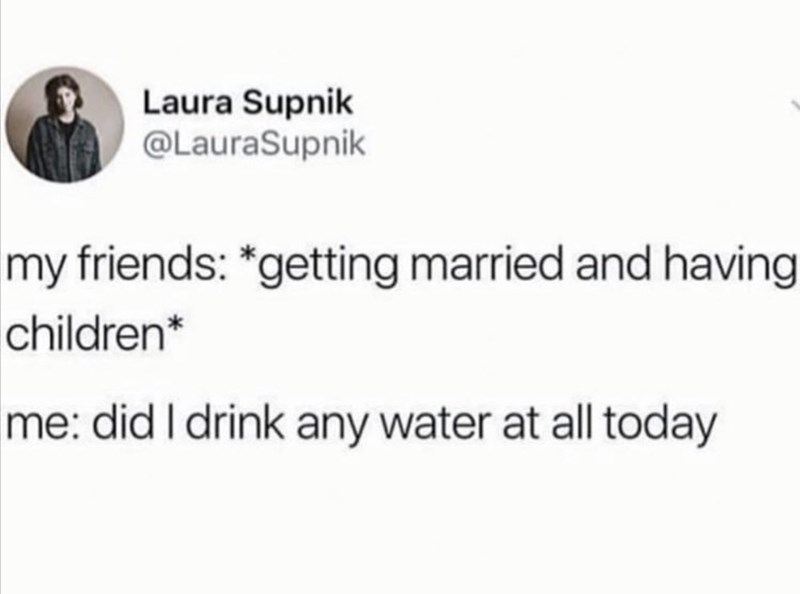 Funny random memes - Text - Laura Supnik @LauraSupnik my friends: *getting married and having children* me: did I drink any water at all today