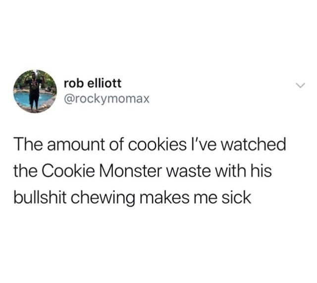Funny random memes - Text - rob elliott @rockymomax The amount of cookies l've watched the Cookie Monster waste with his bullshit chewing makes me sick