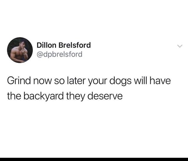Funny random memes - Text - Dillon Brelsford @dpbrelsford Grind now so later your dogs will have the backyard they deserve