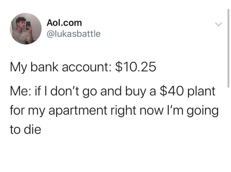 Funny random memes - Text - Aol.com @lukasbattle My bank account: $10.25 Me: if I don't go and buy a $40 plant for my apartment right now l'm going to die