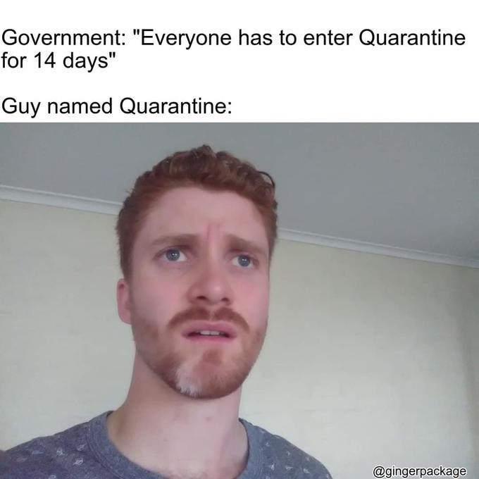 "Face - Government: ""Everyone has to enter Quarantine for 14 days"" Guy named Quarantine: @gingerpackage"
