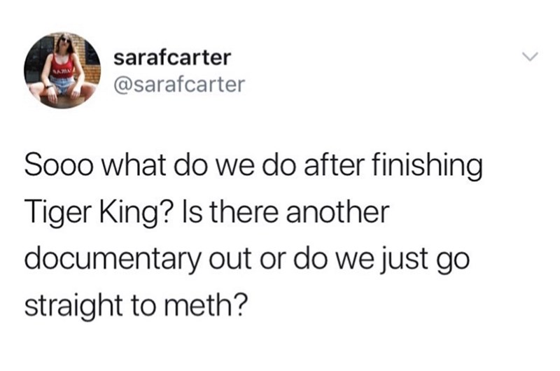 Text - sarafcarter @sarafcarter Sooo what do we do after finishing Tiger King? Is there another documentary out or do we just go straight to meth?