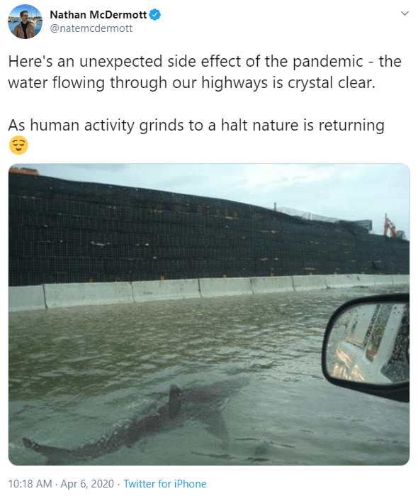 Adaptation - Nathan McDermott @natemcdermott Here's an unexpected side effect of the pandemic - the water flowing through our highways is crystal clear. As human activity grinds to a halt nature is returning 10:18 AM · Apr 6, 2020 · Twitter for iPhone