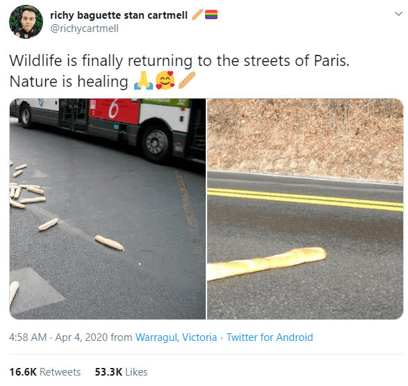 Asphalt - richy baguette stan cartmell @richycartmell Wildlife is finally returning to the streets of Paris. Nature is healing 4:58 AM - Apr 4, 2020 from Warragul, Victoria · Twitter for Android 16.6K Retweets 53.3K Likes