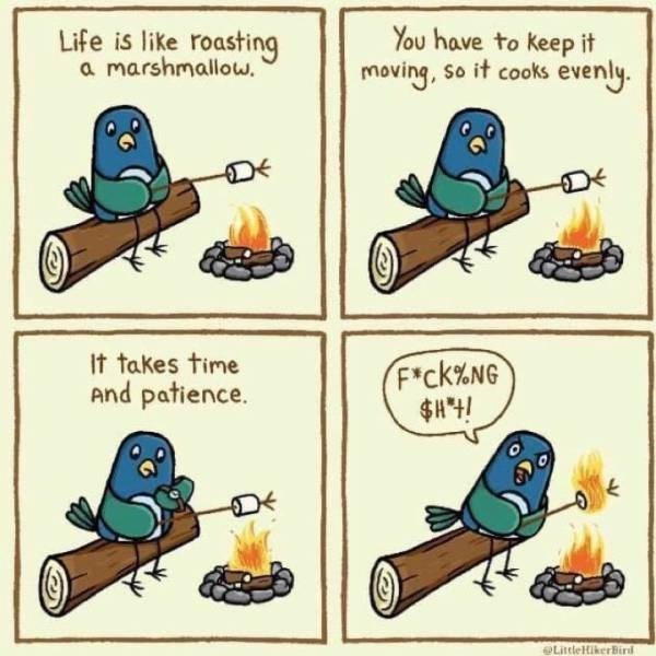 Clip art - Life is like roasting a marshmallow. You have to keep it moving, so it cooks evenly. It takes time And patience. F*ck%NG $H*4! LittleHikerBird