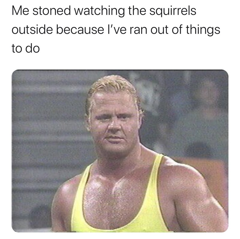 Muscle - Me stoned watching the squirrels outside because l've ran out of things to do