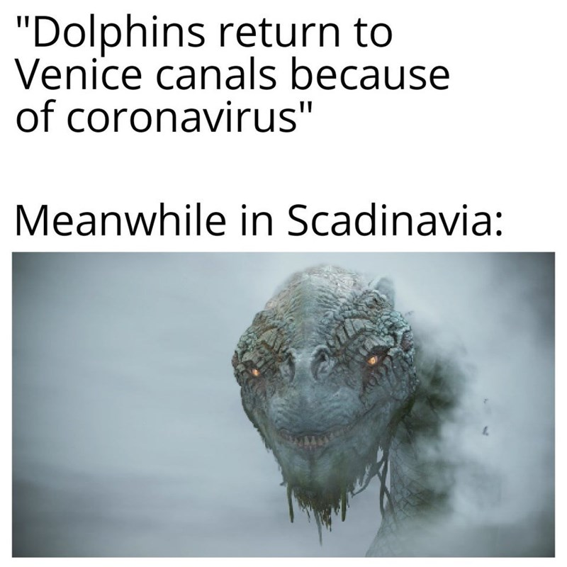 "Text - ""Dolphins return to Venice canals because of coronavirus"" Meanwhile in Scadinavia:"