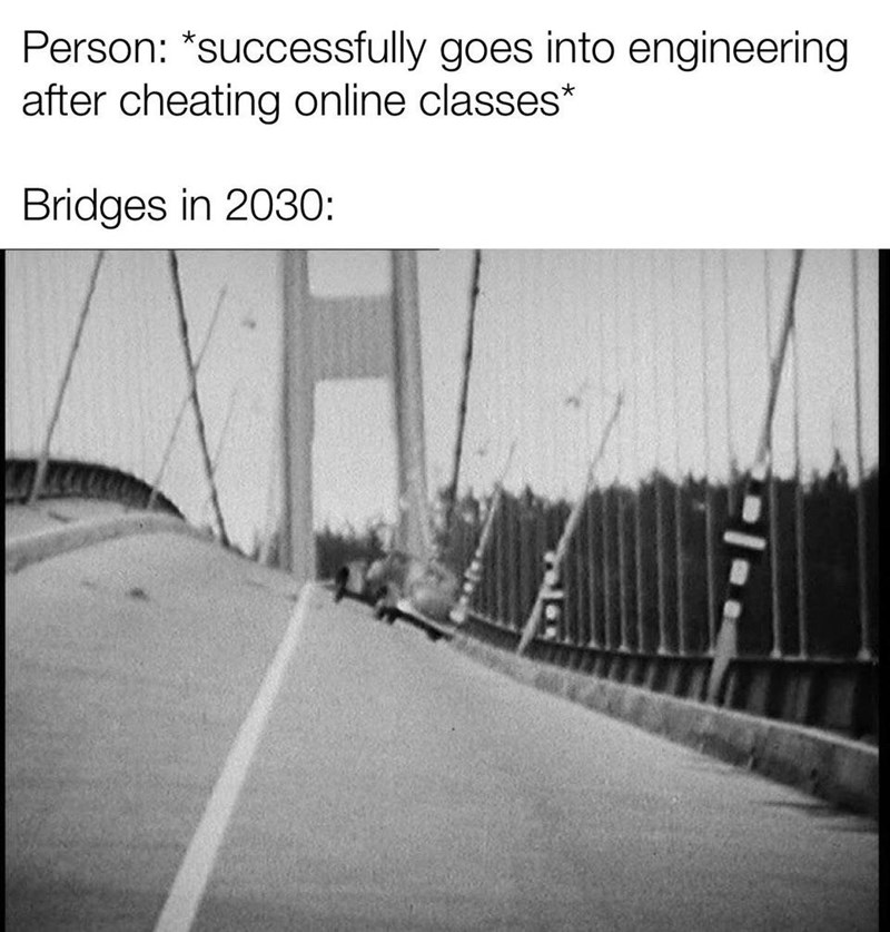 Text - Person: *successfully goes into engineering after cheating online classes* Bridges in 2030: