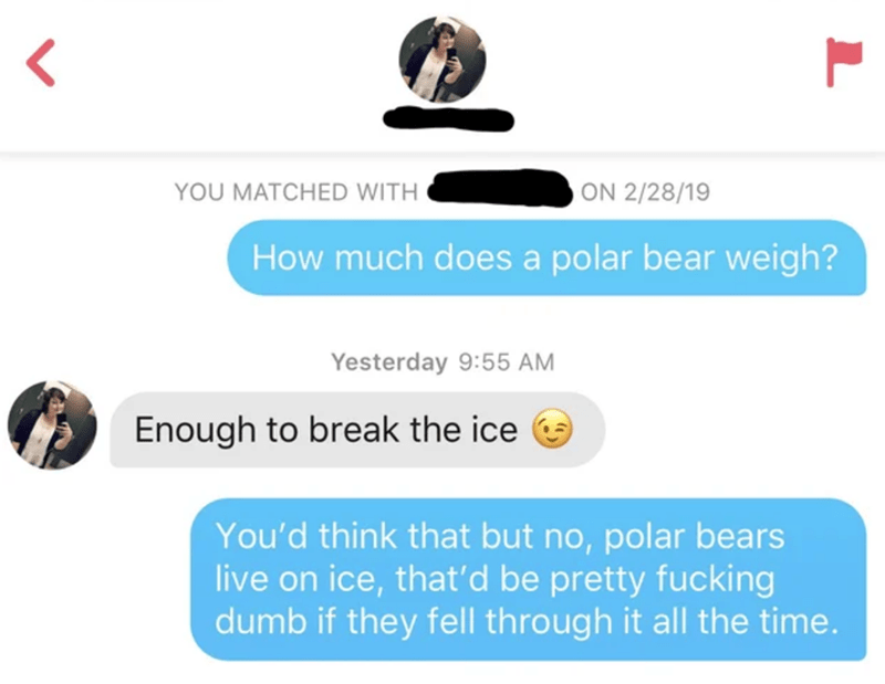Text - YOU MATCHED WITH OON 2/28/19 How much does a polar bear weigh? Yesterday 9:55 AM Enough to break the ice You'd think that but no, polar bears live on ice, that'd be pretty fucking dumb if they fell through it all the time.