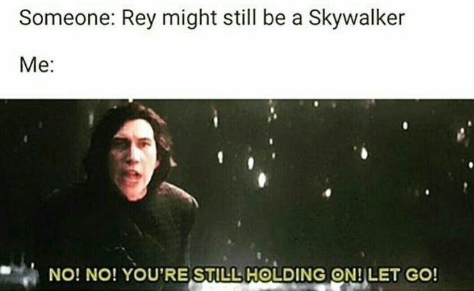 Text - Someone: Rey might still be a Skywalker Me: NO! NO! YOU'RE STILL HOLDING ON! LET GO!
