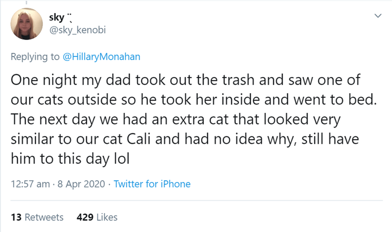 Text - sky . @sky_kenobi Replying to @HillaryMonahan One night my dad took out the trash and saw one of our cats outside so he took her inside and went to bed. The next day we had an extra cat that looked very similar to our cat Cali and had no idea why, still have him to this day lol 12:57 am · 8 Apr 2020 · Twitter for iPhone 13 Retweets 429 Likes