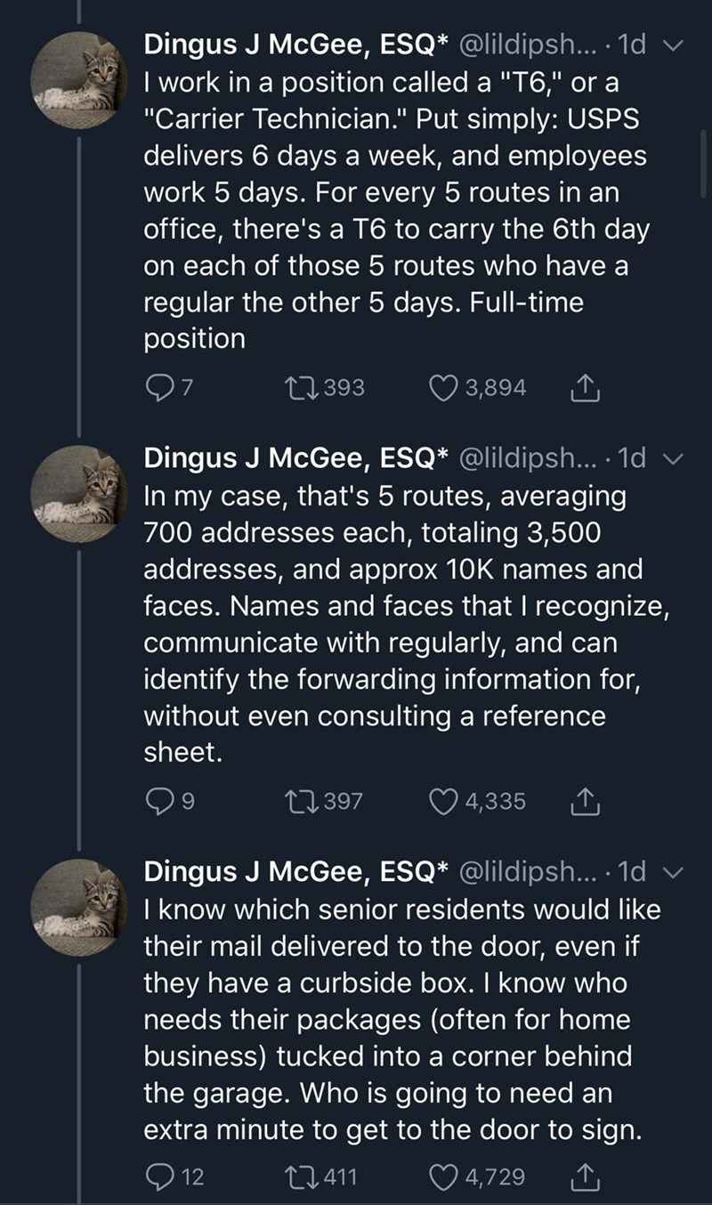 """Text - Dingus J McGee, ESQ* @lildipsh... · 1d v I work in a position called a """"T6,"""" or a """"Carrier Technician."""" Put simply: USPS delivers 6 days a week, and employees work 5 days. For every 5 routes in an office, there's a T6 to carry the 6th day on each of those 5 routes who have a regular the other 5 days. Full-time position 27 393 3,894 Dingus J McGee, ESQ* @lildipsh... · 1d v In my case, that's 5 routes, averaging 700 addresses each, totaling 3,500 addresses, and approx 10K names and faces. N"""