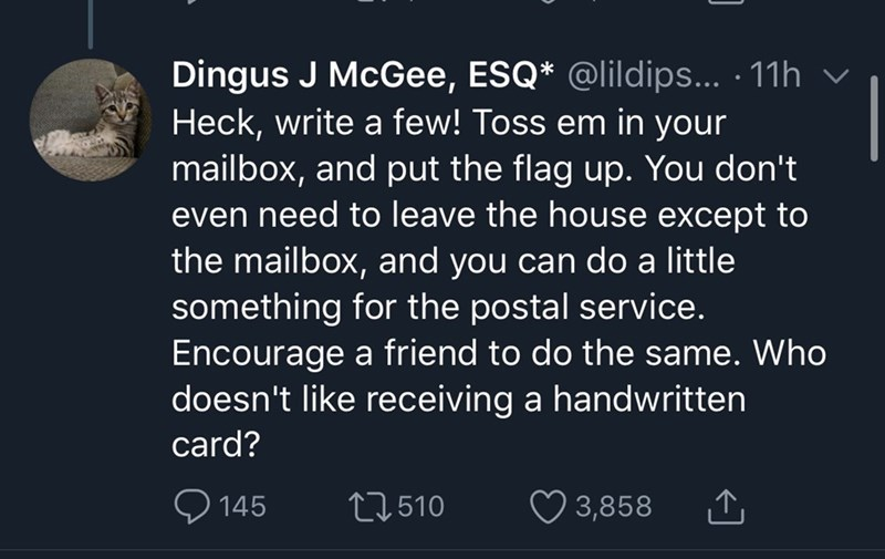Text - Dingus J McGee, ESQ* @lildips... · 11h v Heck, write a few! Toss em in your mailbox, and put the flag up. You don't even need to leave the house except to the mailbox, and you can do a little something for the postal service. Encourage a friend to do the same. Who doesn't like receiving a handwritten card? 145 27510 ♡ 3,858