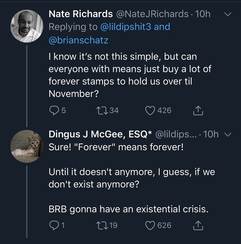 """Text - Nate Richards @NateJRichards · 10h Replying to @lildipshit3 and @brianschatz I know it's not this simple, but can everyone with means just buy a lot of forever stamps to hold us over til November? 2734 426 Dingus J McGee, ESQ* @lildips... · 10h Sure! """"Forever"""" means forever! Until it doesn't anymore, I guess, if we don't exist anymore? BRB gonna have an existential crisis. 27 19 626"""