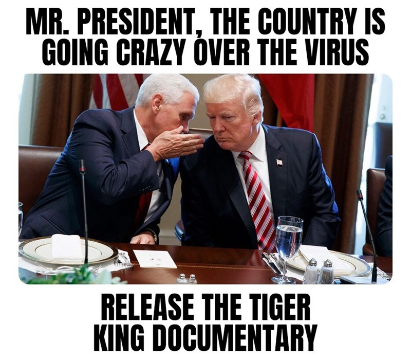 Photo caption - MR. PRESIDENT, THE COUNTRY IS GOING CRAZY ÓVER THE VIRUS RELEASE THE TIGER KING DOCUMENTARY