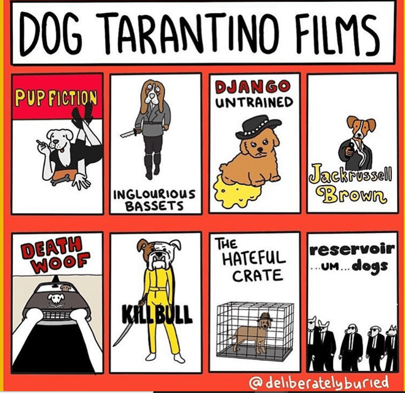 DOG TARANTINO FILMS DJANGO UNTRAINED Jackrussell brown Inglorious BASSETS reservoir dog HATEFUL CRATE death woof @deliberatelyburied