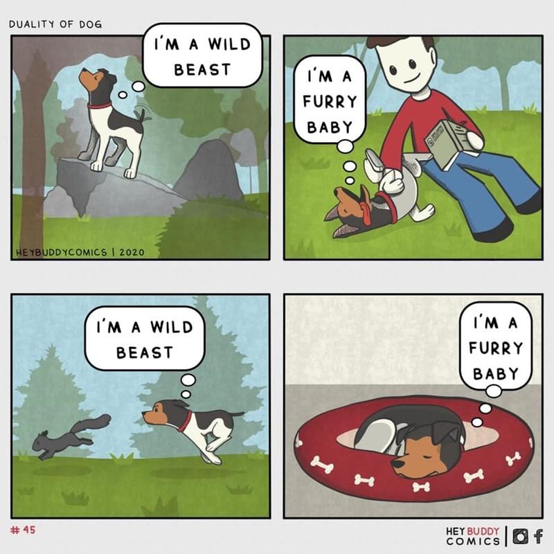 Cartoon - DUALITY OF DOG I'M A WILD BEAST I'M A FURRY BABY HEYBUDDYCOMICS | 2020 I'M A WILD I'M A BEAST FURRY BABY # 45 HEY BUDDYO f