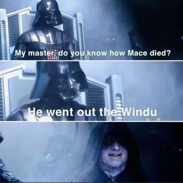 Fictional character - My master, do you know how Mace died? He went out the Windu