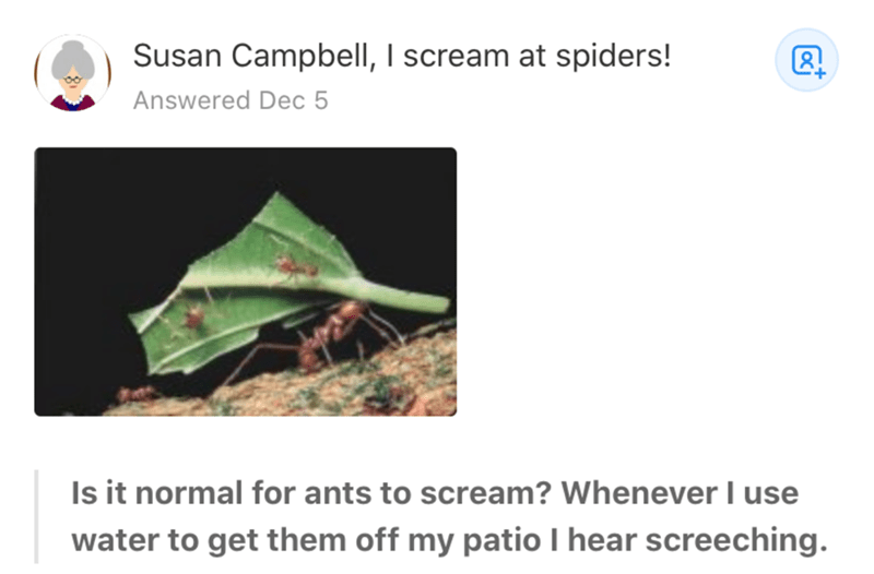 Leaf - Susan Campbell, I scream at spiders! Answered Dec 5 Is it normal for ants to scream? Whenever I use water to get them off my patio I hear screeching.