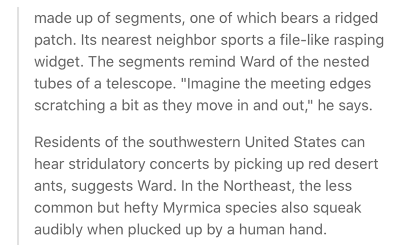 """Text - made up of segments, one of which bears a ridged patch. Its nearest neighbor sports a file-like rasping widget. The segments remind Ward of the nested tubes of a telescope. """"Imagine the meeting edges scratching a bit as they move in and out,"""" he says. Residents of the southwestern United States can hear stridulatory concerts by picking up red desert ants, suggests Ward. In the Northeast, the less common but hefty Myrmica species also squeak audibly when plucked up by a human hand."""