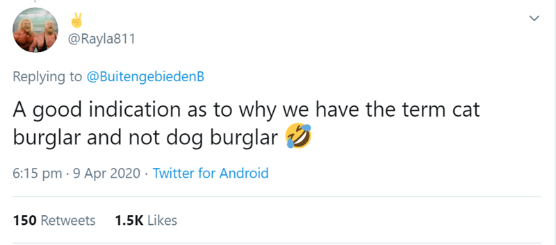 Text - @Rayla811 Replying to @BuitengebiedenB A good indication as to why we have the term cat burglar and not dog burglar 6:15 pm · 9 Apr 2020 · Twitter for Android 150 Retweets 1.5K Likes