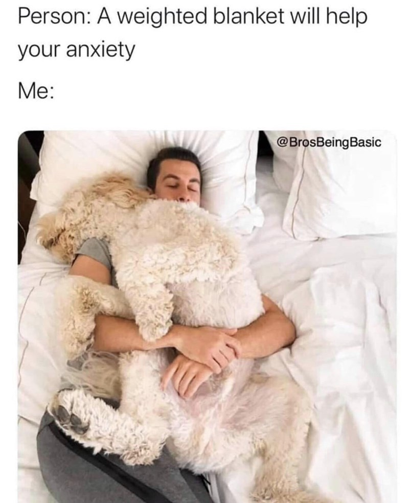 Fur - Person: A weighted blanket will help your anxiety Me: @BrosBeingBasic