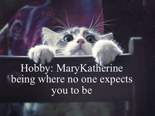Cat - Hobby: MaryKatherine being where no one expects you to be
