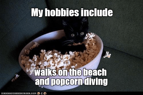 Food - My hobbies include walks on the beach and popcorn diving IOANHASCHEEZBURGER.COM G