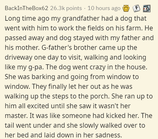 Text - BackInTheBox62 26.3k points · 10 hours ago Long time ago my grandfather had a dog that went with him to work the fields on his farm. He passed away and dog stayed with my father and his mother. G-father's brother came up the driveway one day to visit, walking and looking like my g-pa. The dog went crazy in the house. She was barking and going from window to window. They finally let her out as he was walking up the steps to the porch. She ran up to him all excited until she saw it wasn't h