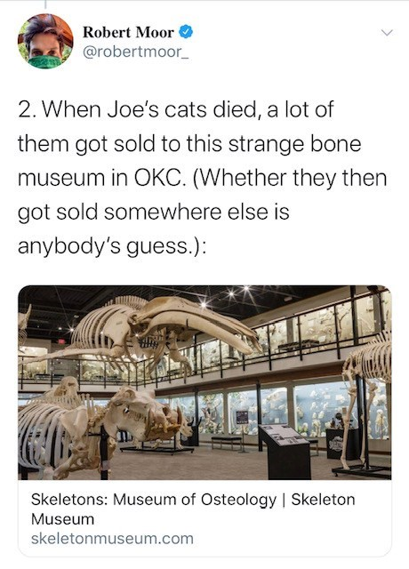 Transport - Robert Moor @robertmoor_ 2. When Joe's cats died, a lot of them got sold to this strange bone museum in OKC. (Whether they then got sold somewhere else is anybody's guess.): Skeletons: Museum of Osteology | Skeleton Museum skeletonmuseum.com