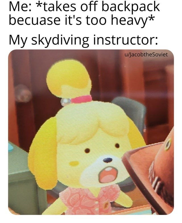 Toy - Me: *takes off backpack becuase it's too heavy* My skydiving instructor: u/JacobtheSoviet