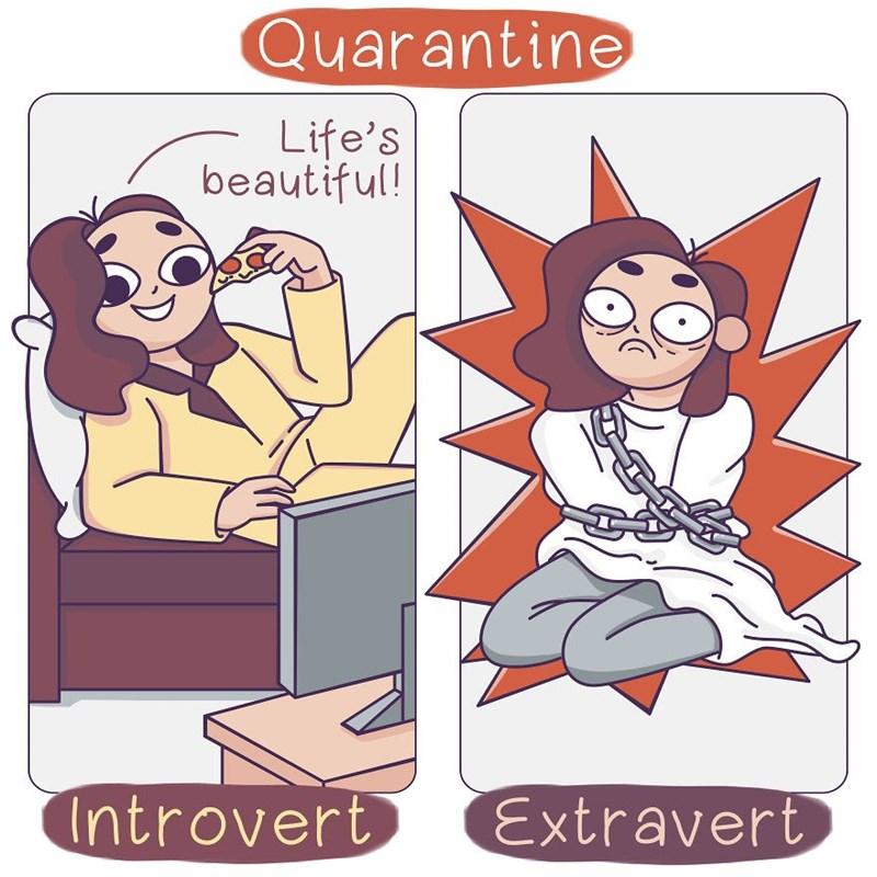Cartoon - Quarantine Life's beautiful! Introvert Extravert