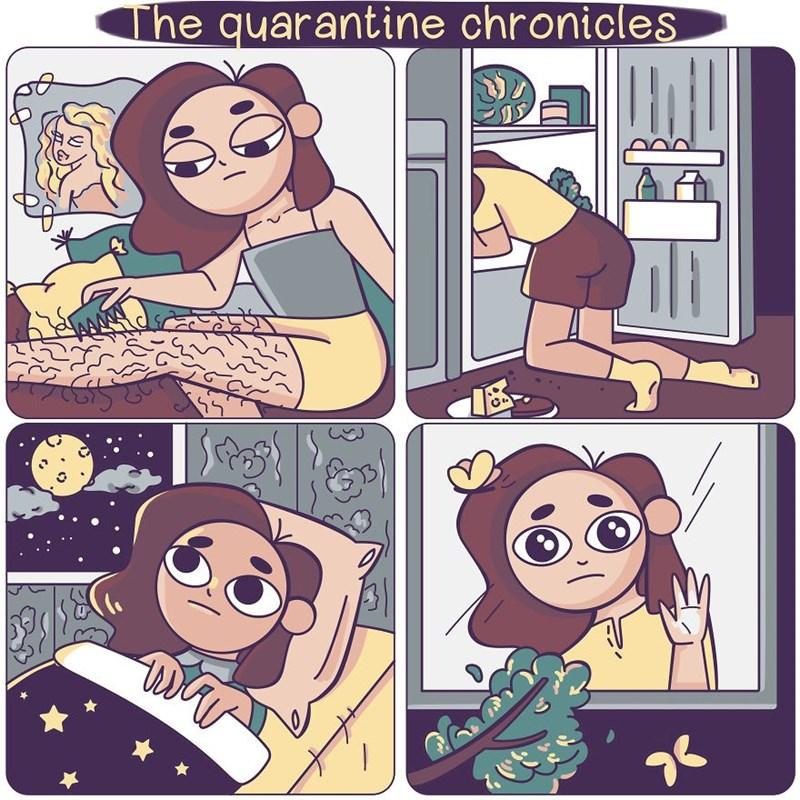 Cartoon - The quarantine chronicles