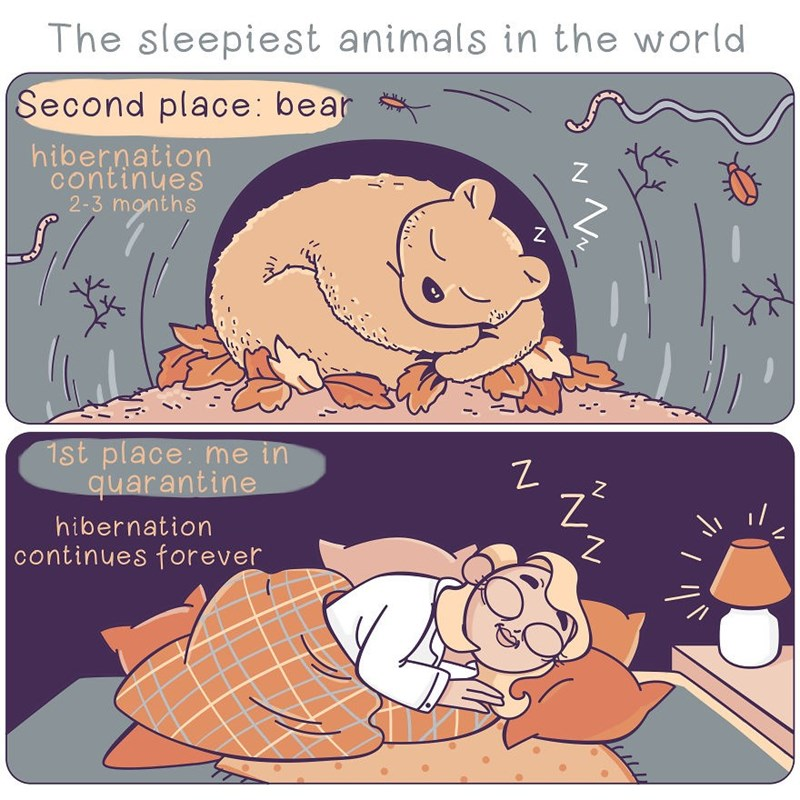Cartoon - The sleepiest animals in the world Second place: bear hibernation continues 2-3 months 1st place: me in quarantine hibernation continues forever