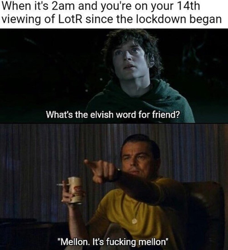 """Text - When it's 2am and you're on your 14th viewing of LotR since the lockdown began What's the elvish word for friend? """"Mellon. It's fucking mellon"""""""
