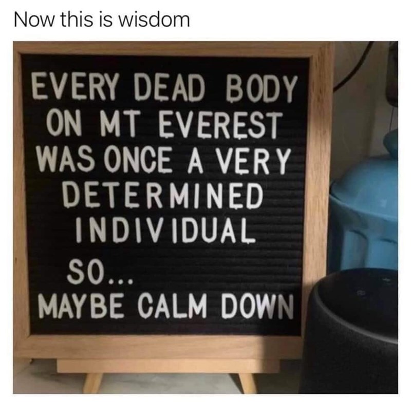 Text - Now this is wisdom EVERY DEAD BODY ON MT EVEREST WAS ONCE A VERY DETERMINED INDIVIDUAL S0.. MAYBE CALM DOWN