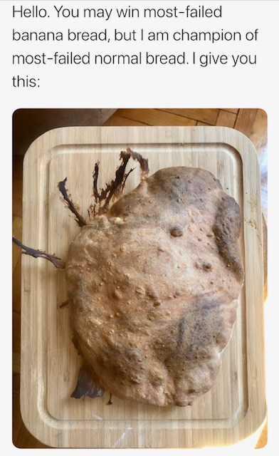 Organism - Hello. You may win most-failed banana bread, but I am champion of most-failed normal bread. I give you this: