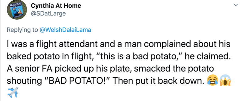 """Text - Cynthia At Home @SDatLarge We Can Do lh! Replying to @WelshDalaiLama I was a flight attendant and a man complained about his baked potato in flight, """"this is a bad potato,"""" he claimed. A senior FA picked up his plate, smacked the potato shouting """"BAD POTATO!"""" Then put it back down."""