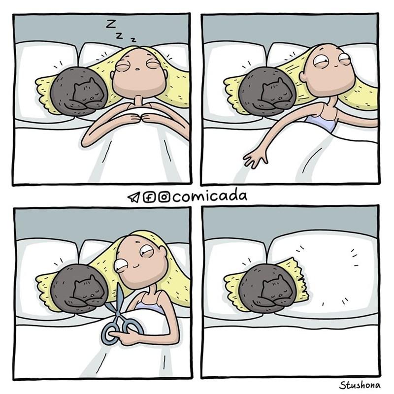 Cartoon - 100comicada Stushona