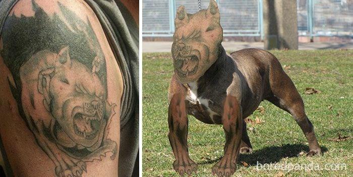 Tattoo - botedbanda com