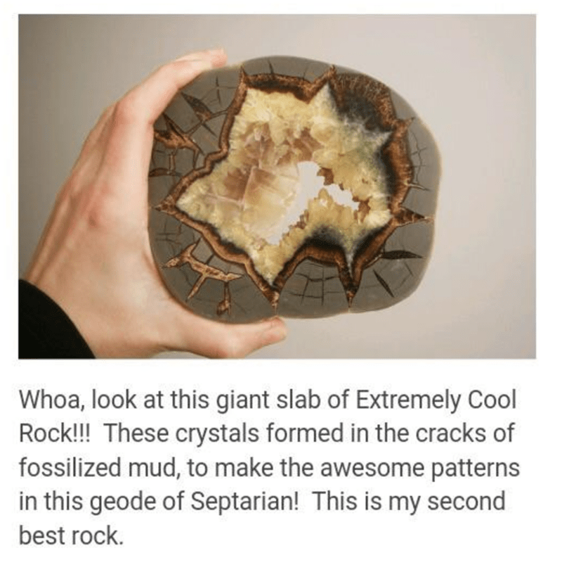 Dish - Whoa, look at this giant slab of Extremely Cool Rock!! These crystals formed in the cracks of fossilized mud, to make the awesome patterns in this geode of Septarian! This is my second best rock.
