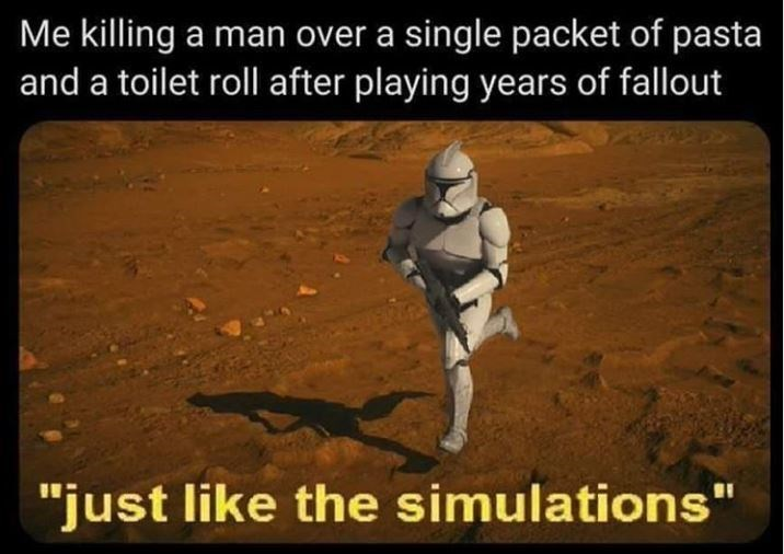 "Text - Me killing a man over a single packet of pasta and a toilet roll after playing years of fallout ""just like the simulations"""