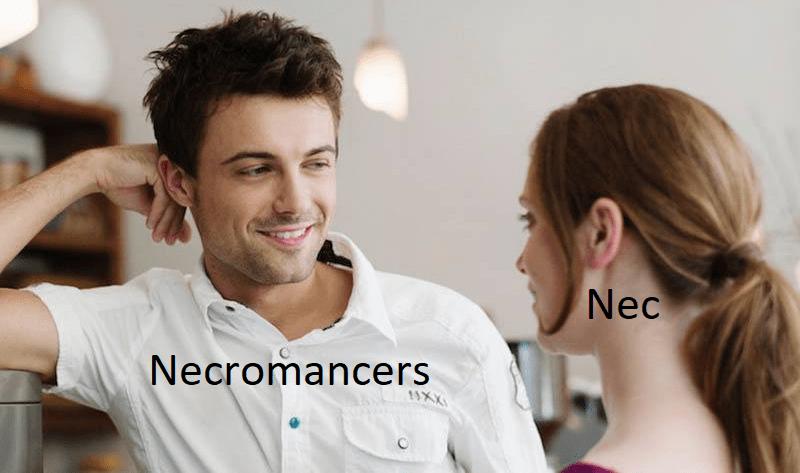 Skin - Nec Necromancers 1SXX
