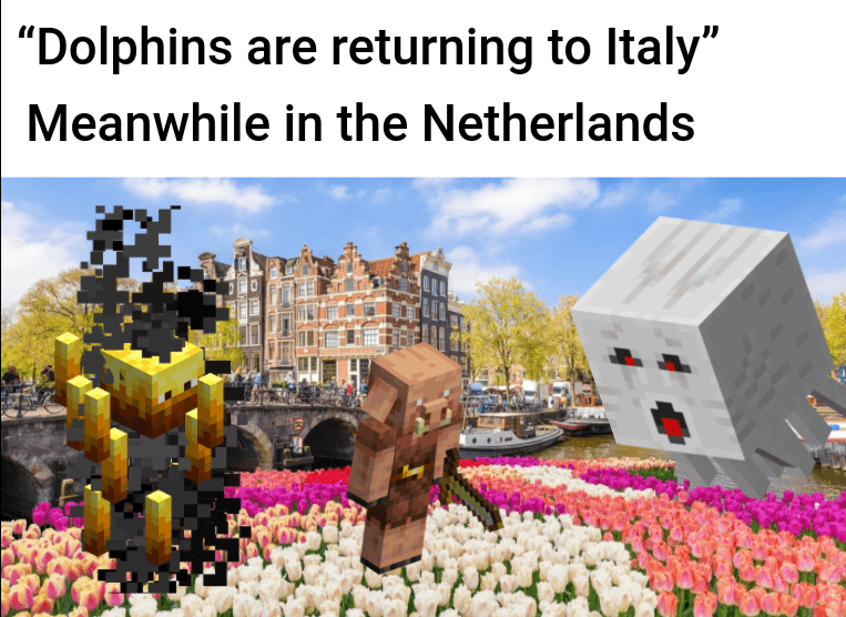 "Spring - ""Dolphins are returning to Italy"" Meanwhile in the Netherlands"