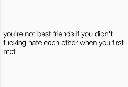 Text - you're not best friends if you didn't fucking hate each other when you first met