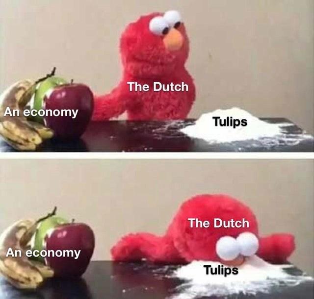 Plush - The Dutch An economy Tulips The Dutch An economy Tulips