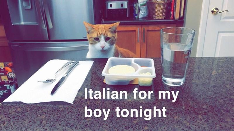 Cat - wriles Italian for my AKFAST boy tonight