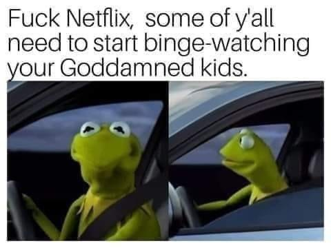 Frog - Fuck Netflix, some of y'all need to start binge-watching your Goddamned kids.
