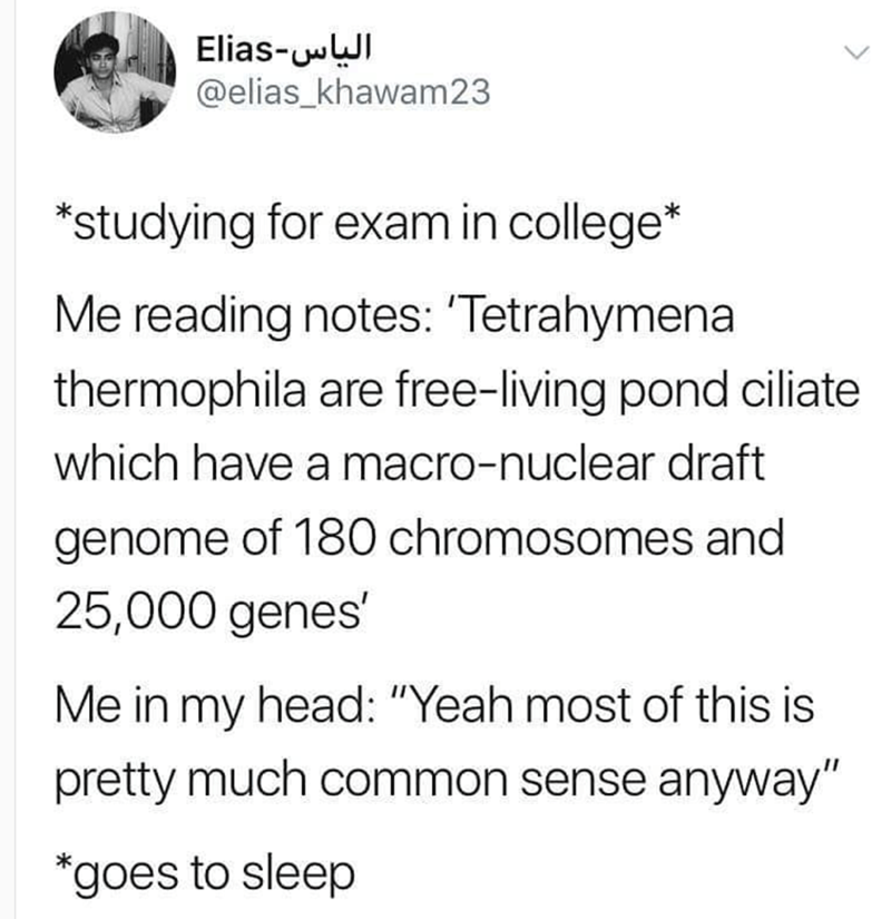 """Text - Elias-wWI @elias_khawam23 *studying for exam in college* Me reading notes: 'Tetrahymena thermophila are free-living pond ciliate which have a macro-nuclear draft genome of 180 chromosomes and 25,000 genes' Me in my head: """"Yeah most of this is pretty much common sense anyway"""" *goes to sleep <>"""